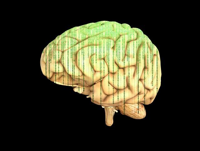mozek s čísly