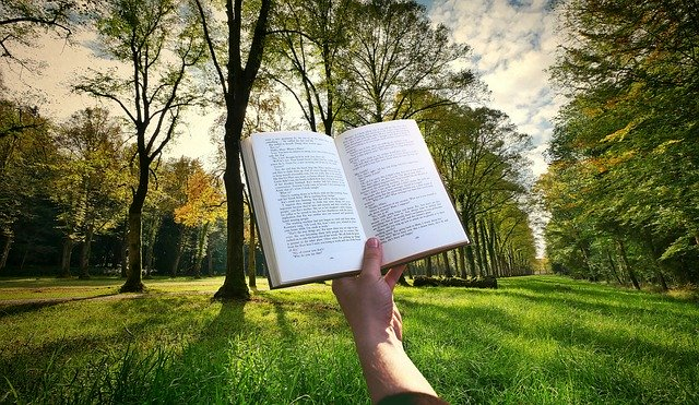 kniha a příroda